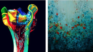 The Art & Soul of Color images by Suzanne Wallace Mears and Stephanie Paige